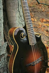 mandolintop2R